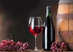 """Бутикова винарска изба """"Домейн Трифонов"""", Песнопой"""