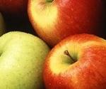 Мелиса Фрукт - Производство и търговия с ябълки и череши