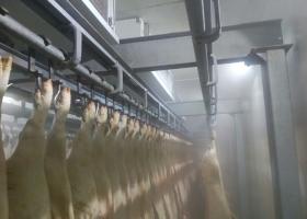 Targovishte - meat processing